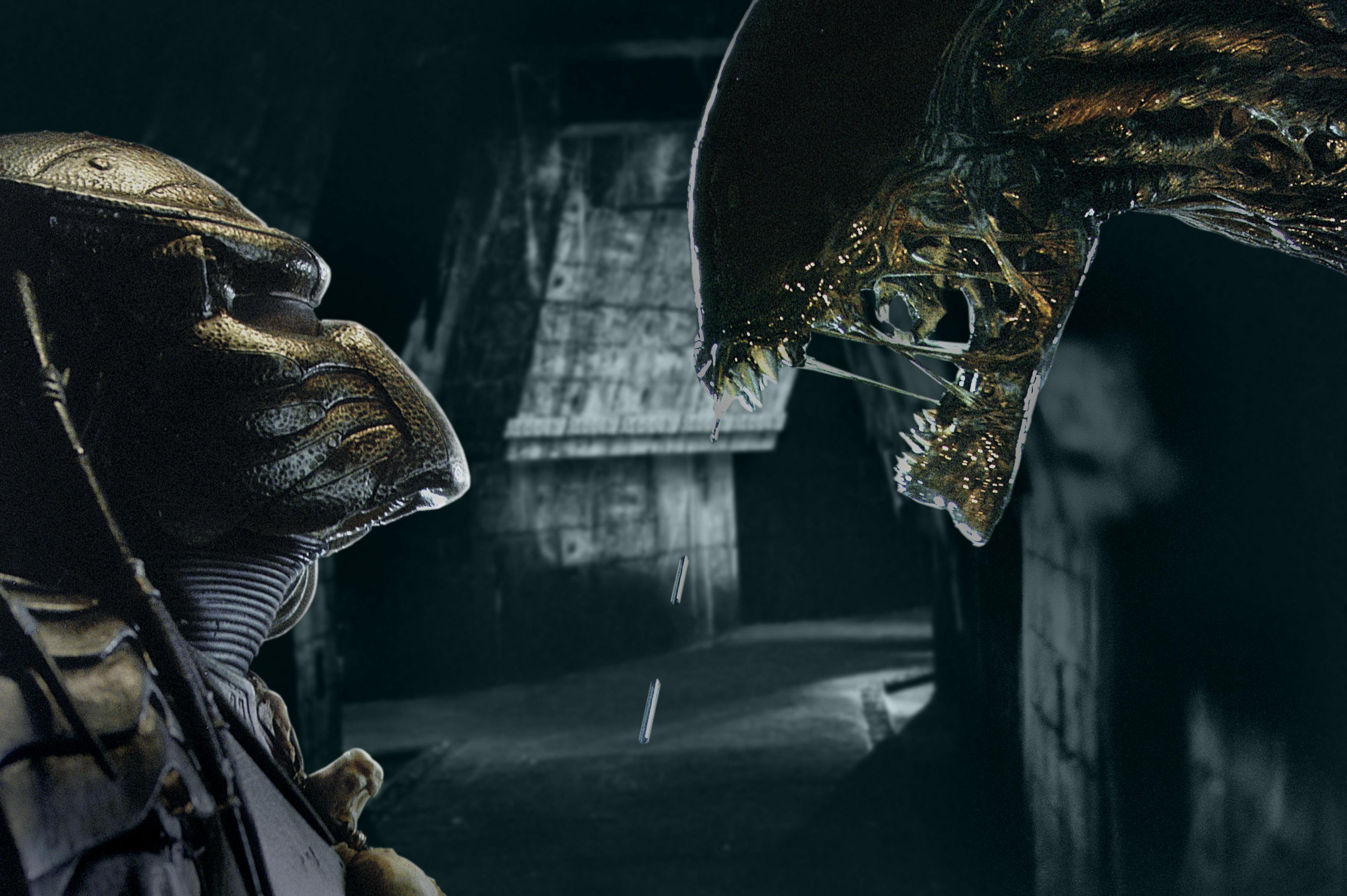 La pelea entre Alien y Depredador fue un éxito entre el público.