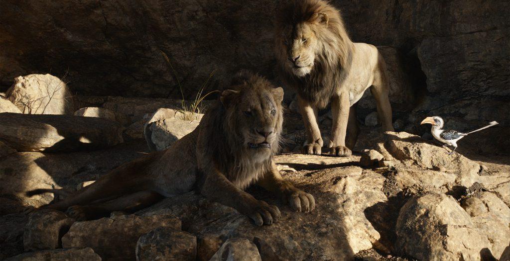 para el rey león